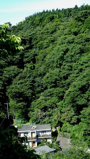 Kamakuraen2